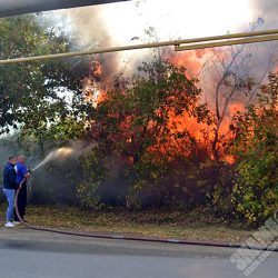 Пожар на пластовской базарке