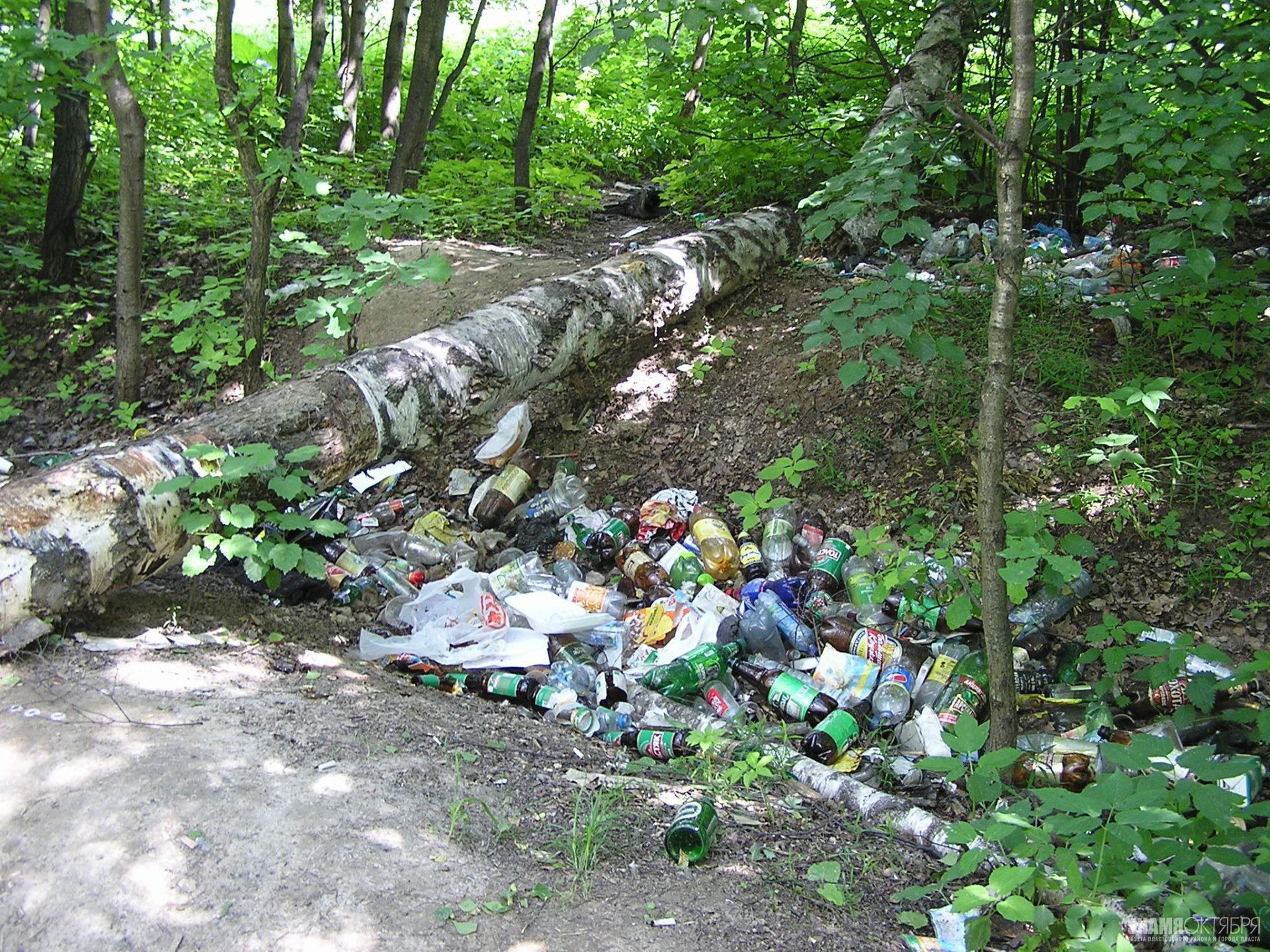 Незаконный вывоз мусора