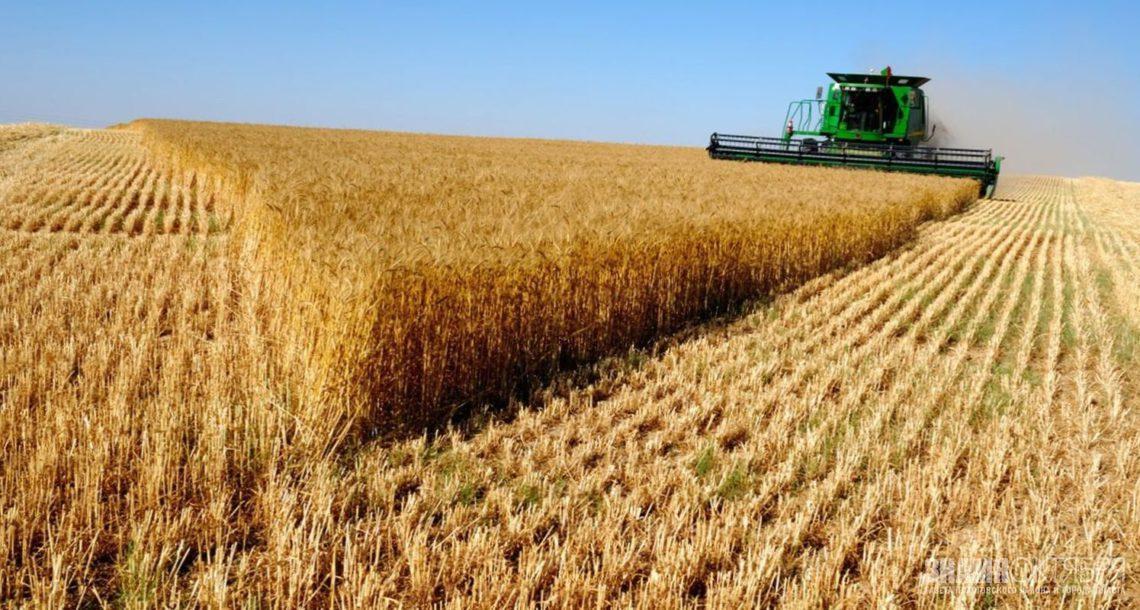 Челябинская область представила свои экспортные сельскохозяйственные возможности в КНР