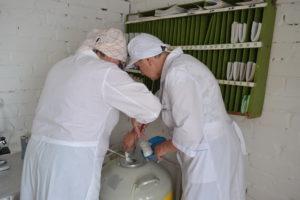 Конкурс техников искусственного осеменения коров