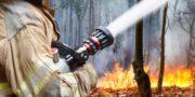 Обстановка с лесными пожарами в Челябинской области стабилизирована