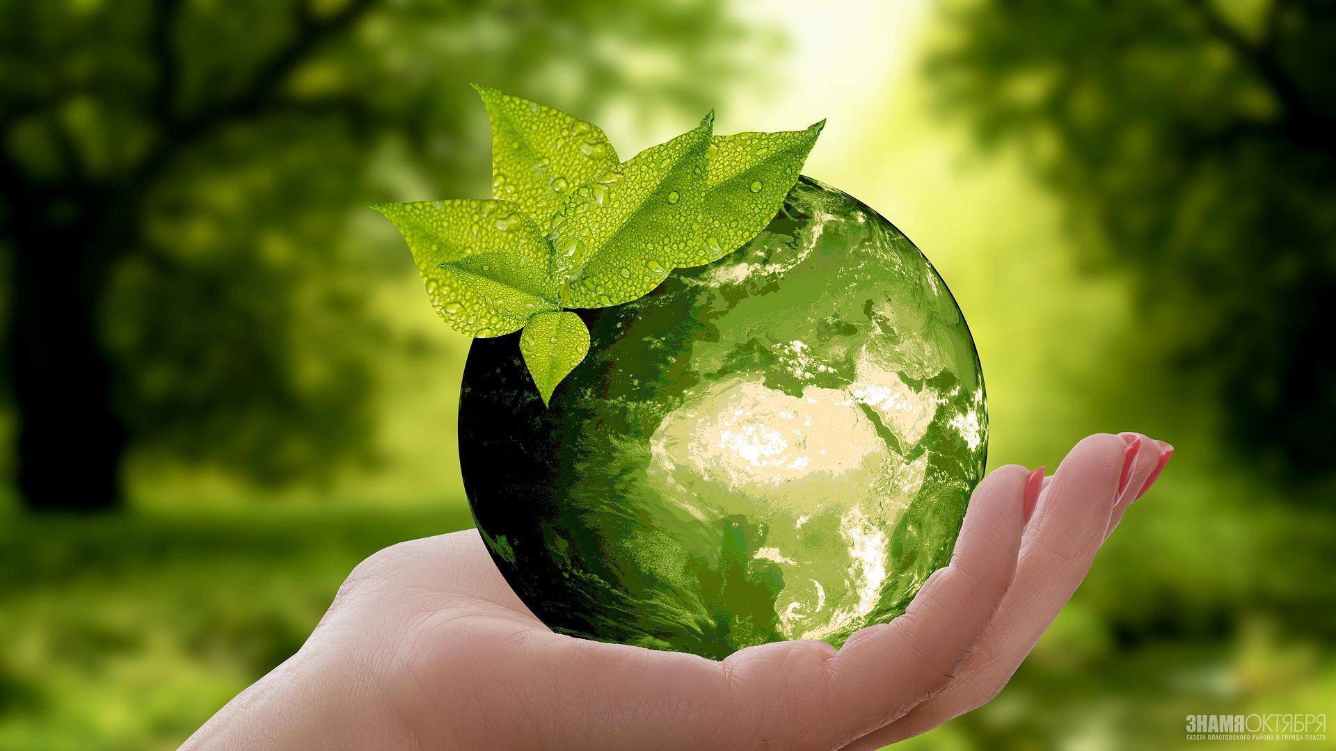 Поздравление с Днем эколога от Алексея Текслера