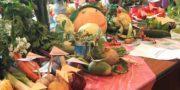 Районный конкурс - выставка цветов, плодов, овощей и заготовок «Щедрая осень в пестром сарафане»
