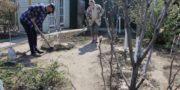 Южноуральские садоводы не начнут сезон до окончания режима самоизоляции