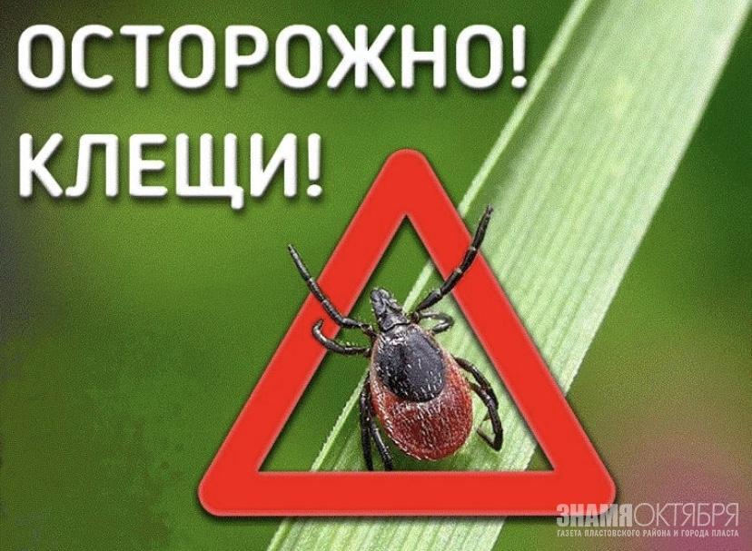 Осторожно! Клещи!