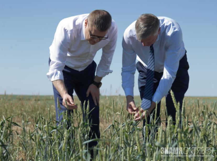 Алексей Текслер провел совещание с представителями аграрной отрасли в связи с почвенной засухой