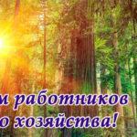 Поздравление губернатора Челябинской области Алексея Текслера с Днем работников леса