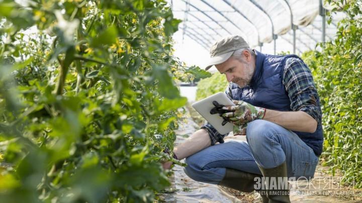 В Челябинской области трансформирована подпрограмма «Малое и среднее предпринимательство и поддержка индивидуальной предпринимательской инициативы»