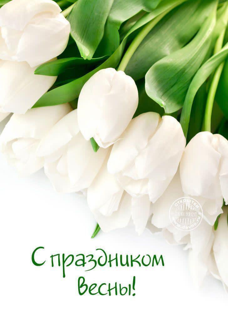 Поздравление губернатора Челябинской области Алексея Текслера с Международным женским днём