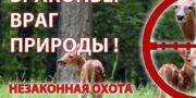 На Южном Урале полицейскими задержаны подозреваемые в браконьерстве