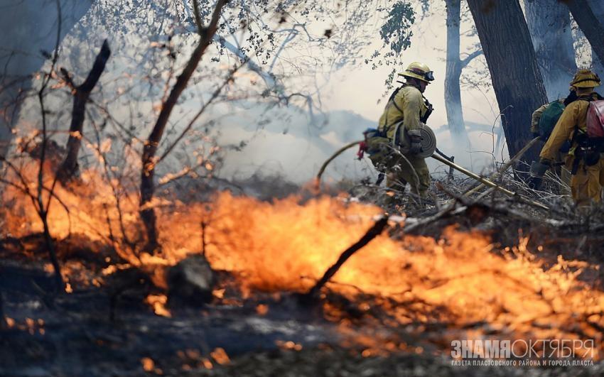 В Пластовском районе локализовали крупный лесной пожар
